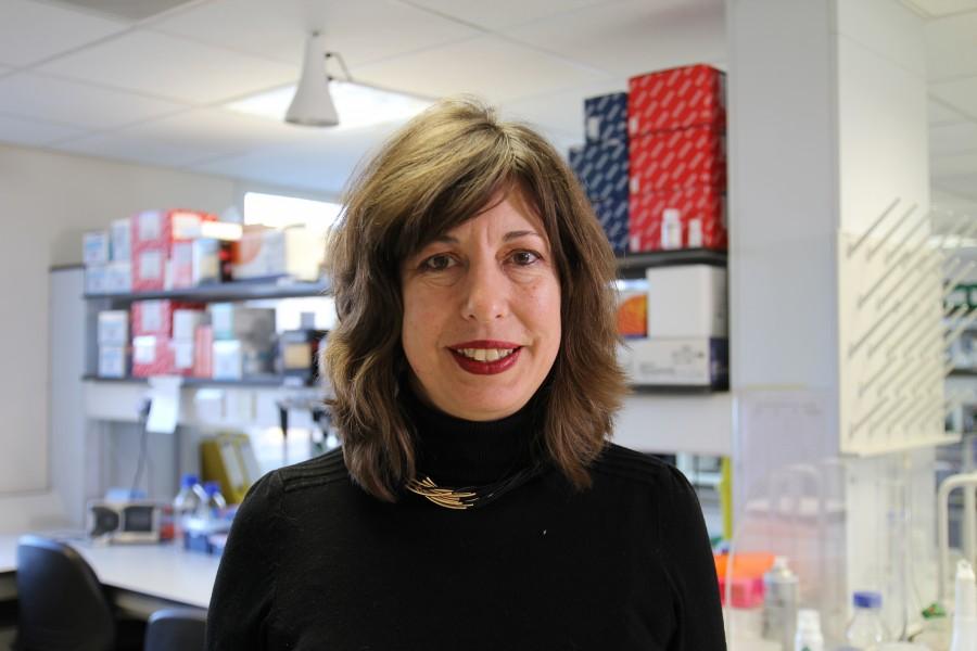 A photo of Professor Anne Barton