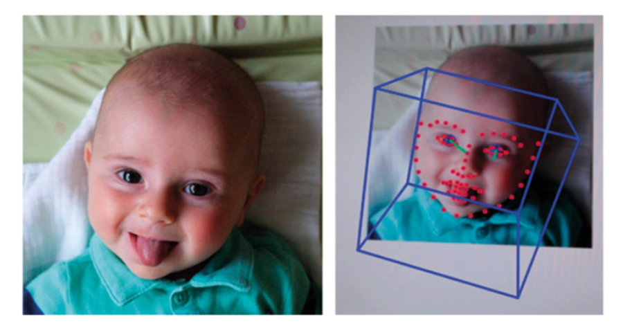 Example of the automatic detection of facial features. Here, open-source software captures both the overall head position (blue box) and facial features (red dots) in a video of an infant.