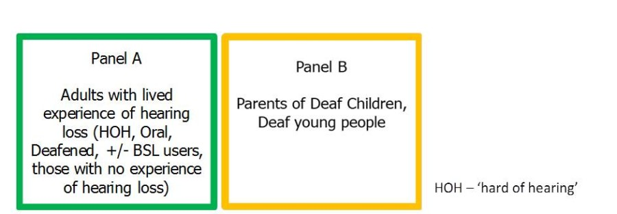 Panel A - D/deaf communities and Panel B parents of D/deaf children and young people